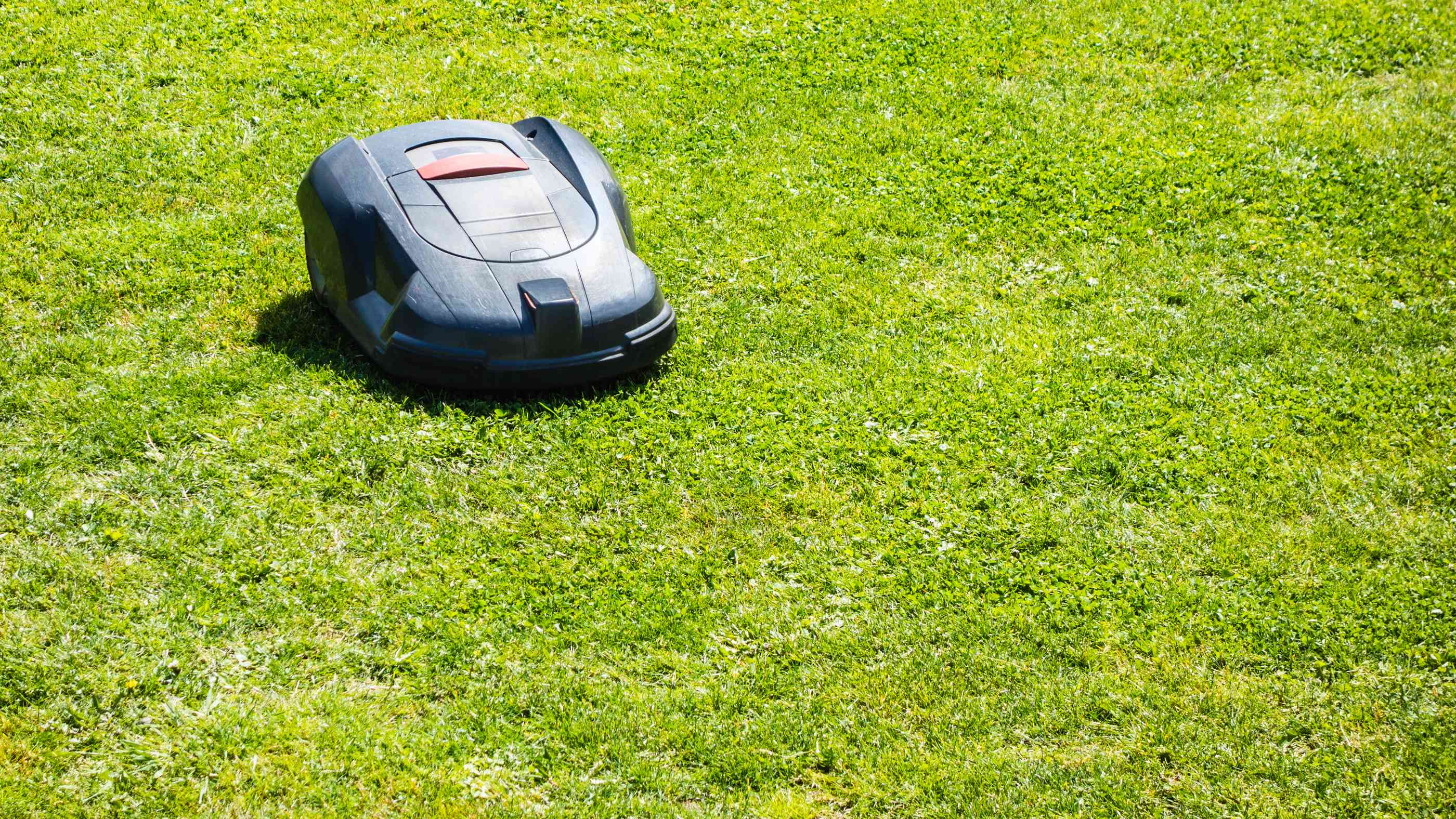 a robotic lawn mower working on a green grass field